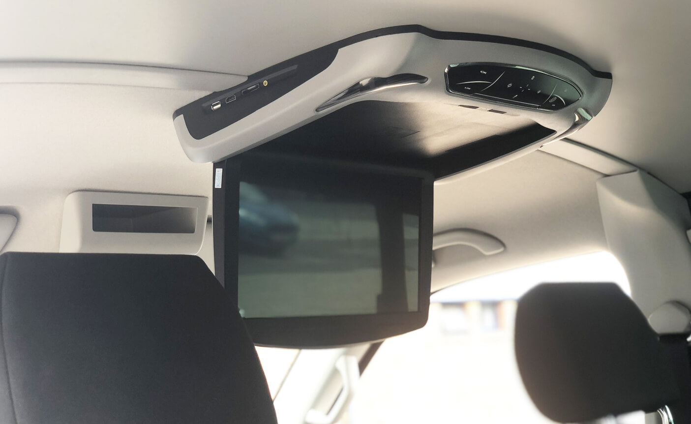 Roof mount DVD